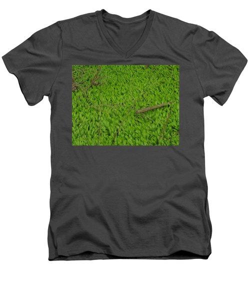 Ramsons  Men's V-Neck T-Shirt