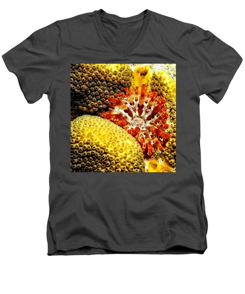 Rare Orange Tipped Corallimorph - Fire In The Sea Men's V-Neck T-Shirt by Amy McDaniel