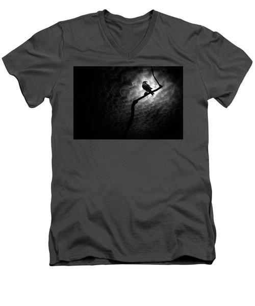 Raven, Death Valley Men's V-Neck T-Shirt by Marius Sipa