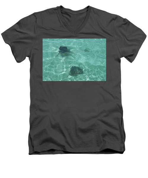 Rays Men's V-Neck T-Shirt