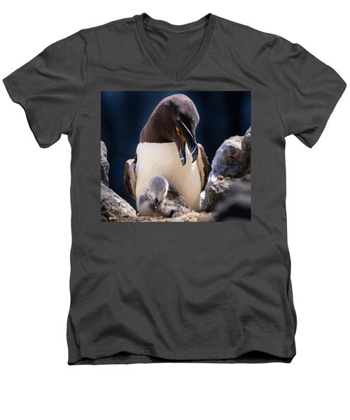 Razorbill With Chick, Farne Islands Men's V-Neck T-Shirt