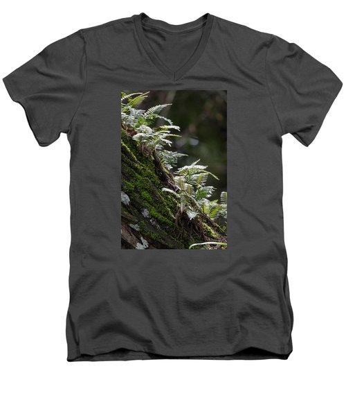 Reach For The Light Men's V-Neck T-Shirt