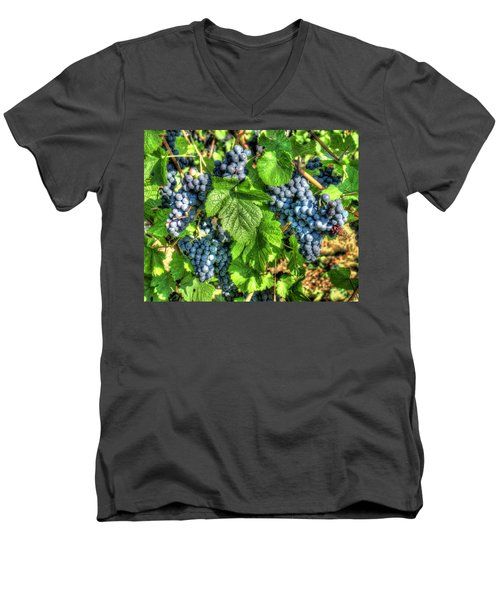 Men's V-Neck T-Shirt featuring the photograph Ready For Harvest by Alan Toepfer