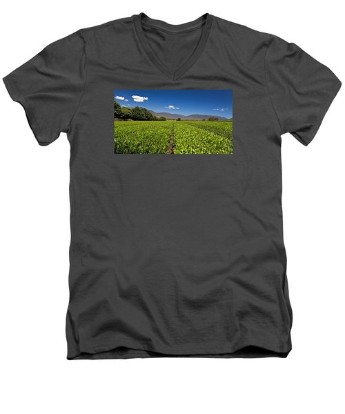Ready For Harvest Men's V-Neck T-Shirt by Mark Lucey