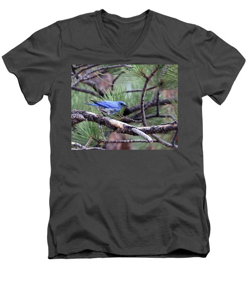 Ready To Fly Men's V-Neck T-Shirt
