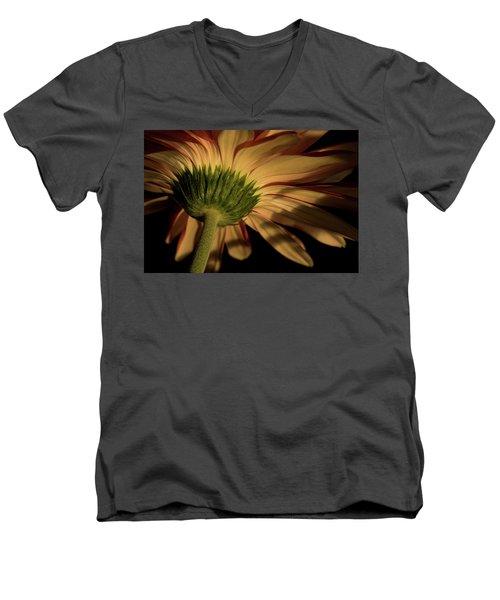 Rebel Men's V-Neck T-Shirt