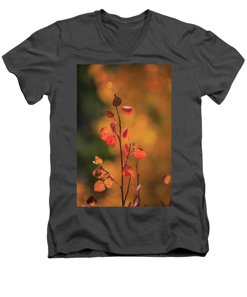 Men's V-Neck T-Shirt featuring the photograph Red And Gold by David Chandler