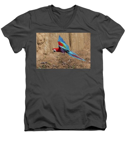 Red-and-green Macaw Men's V-Neck T-Shirt