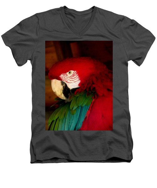 Red And Green Wing Macaw Men's V-Neck T-Shirt