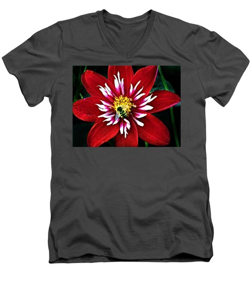Red And White Flower With Bee Men's V-Neck T-Shirt