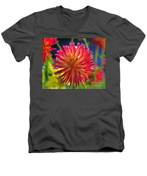 Red And Yellow Dahlia Men's V-Neck T-Shirt
