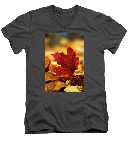 Red Autumn Men's V-Neck T-Shirt by Gary Bridger