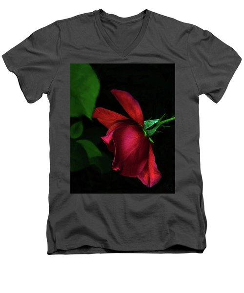 Red Beauty Men's V-Neck T-Shirt