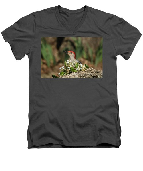 Red-bellied Woodpecker In Spring Men's V-Neck T-Shirt by Sheila Brown