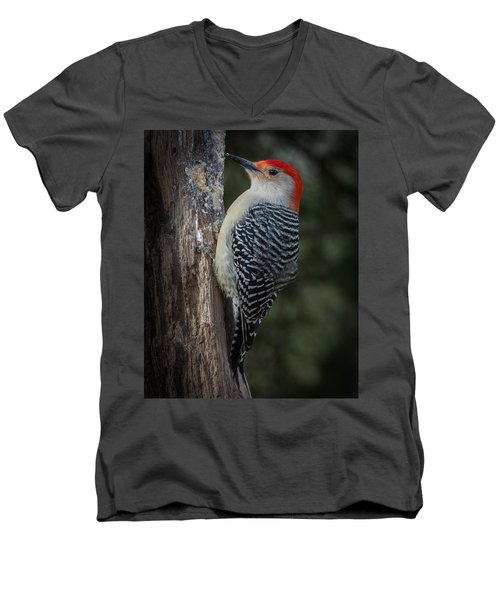 Red-bellied Woodpecker Men's V-Neck T-Shirt by Kenneth Cole