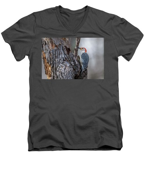 Men's V-Neck T-Shirt featuring the photograph Red Bellied Woody by Paul Freidlund