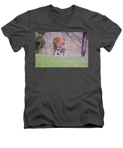 Red Bucks 6 Men's V-Neck T-Shirt