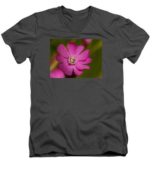 Red Campion Men's V-Neck T-Shirt