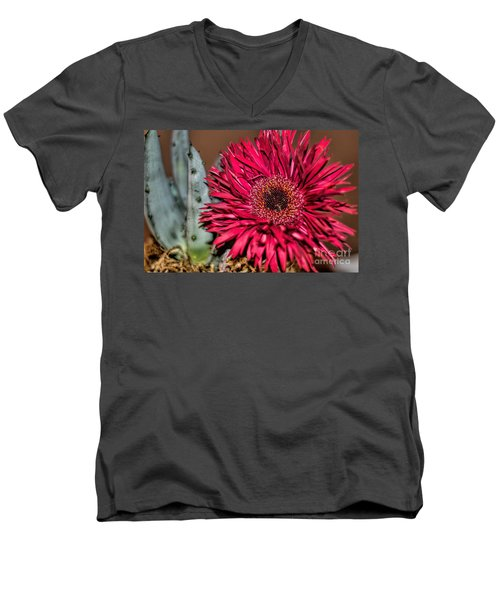 Men's V-Neck T-Shirt featuring the photograph Red Daisy And The Cactus by Diana Mary Sharpton