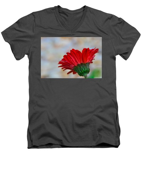 Red Daisy  Men's V-Neck T-Shirt