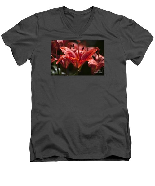 Men's V-Neck T-Shirt featuring the photograph Red Day Lily 20120615_52a by Tina Hopkins