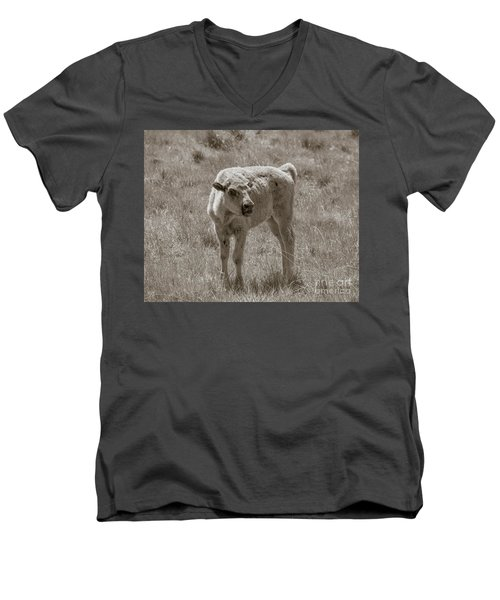 Men's V-Neck T-Shirt featuring the photograph Red Dog Buffalo Calf by Rebecca Margraf
