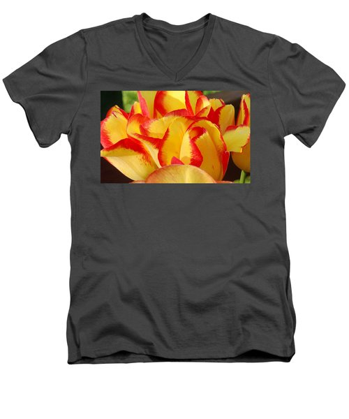 Red-edged Tulips Men's V-Neck T-Shirt