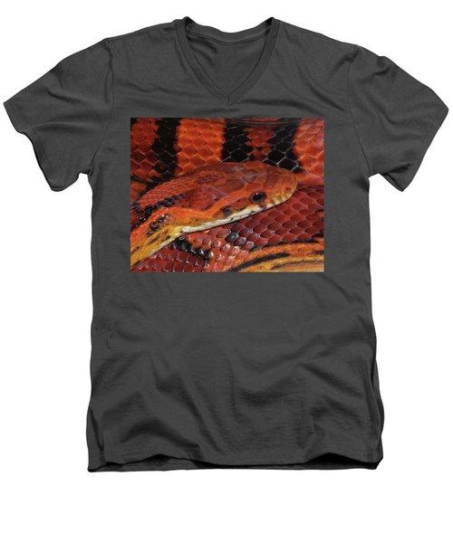 Red Eyed Snake Men's V-Neck T-Shirt