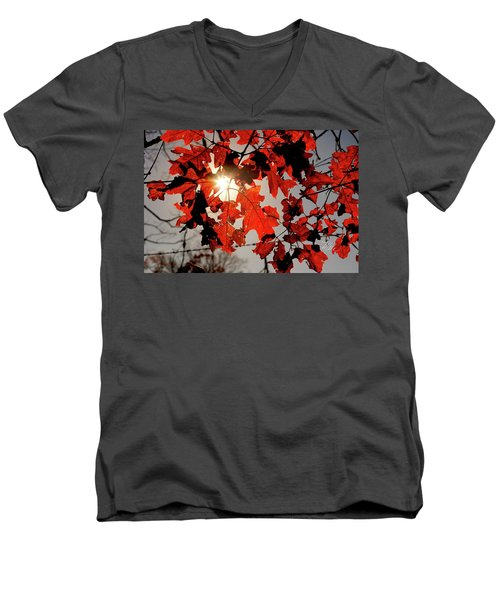 Red Fall Leaves Men's V-Neck T-Shirt by Meta Gatschenberger