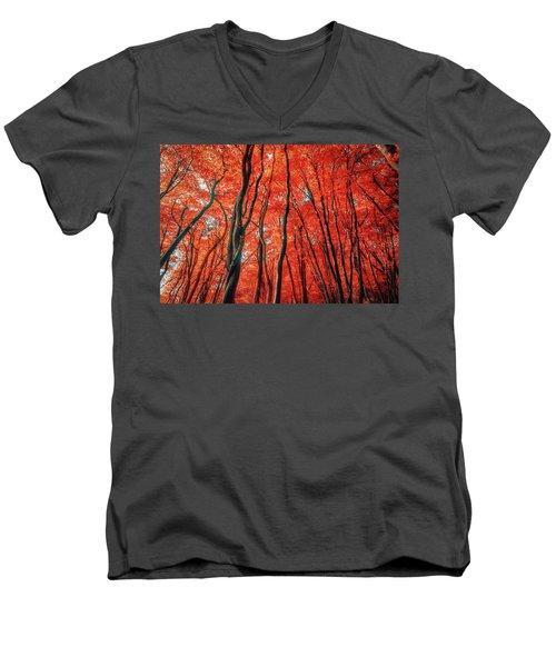 Red Forest Of Sunlight Men's V-Neck T-Shirt