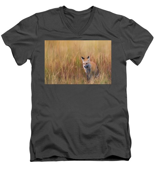 Men's V-Neck T-Shirt featuring the photograph Red Fox Hunting  by Kelly Marquardt
