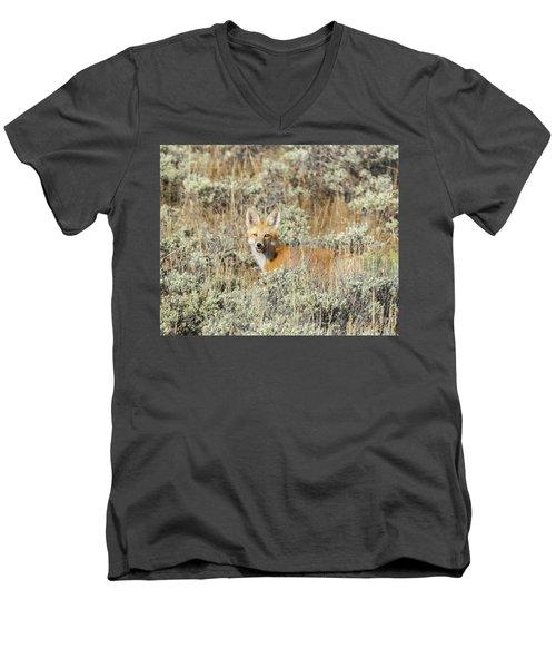 Red Fox In Sage Brush Men's V-Neck T-Shirt