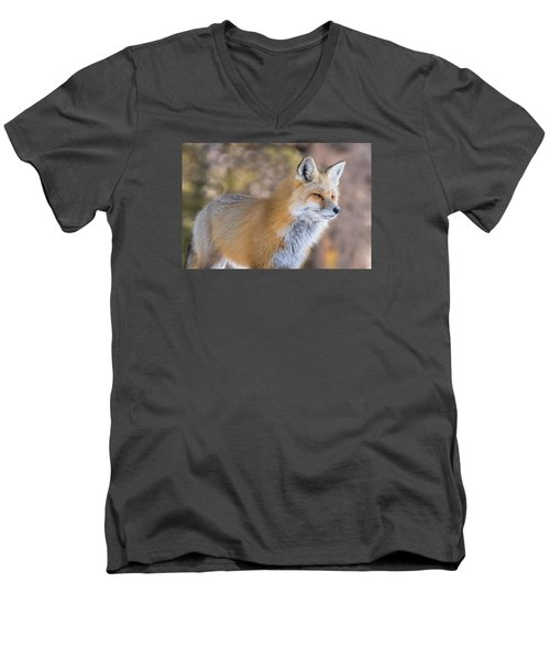 Men's V-Neck T-Shirt featuring the photograph Red Fox In Winter Glow by Yeates Photography