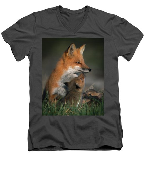 Red Fox Mother And Kits Men's V-Neck T-Shirt