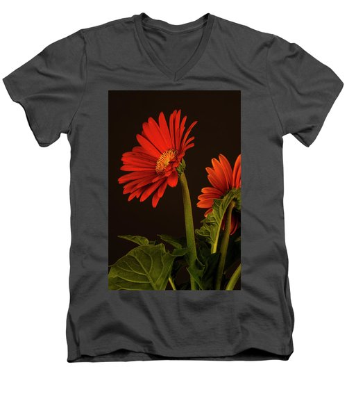 Men's V-Neck T-Shirt featuring the photograph Red Gerbera Daisy 1 by Richard Rizzo