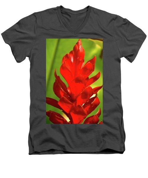 Red Ginger Bud After Rainfall Men's V-Neck T-Shirt