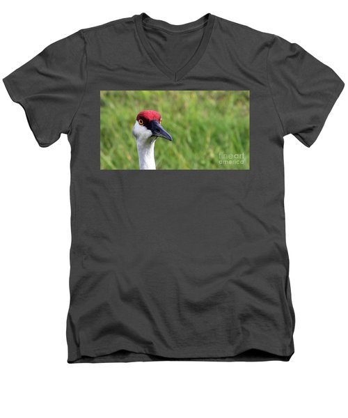 Red Headed Crane Men's V-Neck T-Shirt