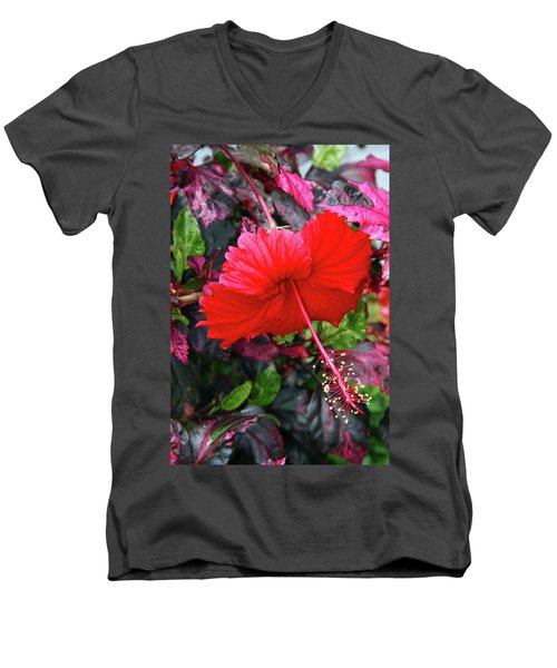 Red Hibiscus  Men's V-Neck T-Shirt by Inspirational Photo Creations Audrey Woods