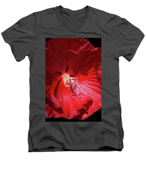 Red Hibiscus Men's V-Neck T-Shirt by Judy Johnson