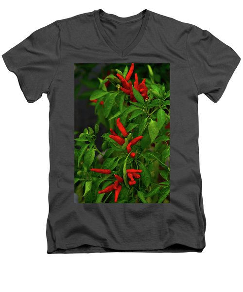 Red Hot Chili Peppers Men's V-Neck T-Shirt