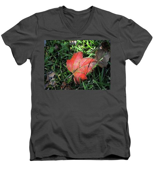 Red Leaf Against Green Grass Men's V-Neck T-Shirt by Michele Wilson
