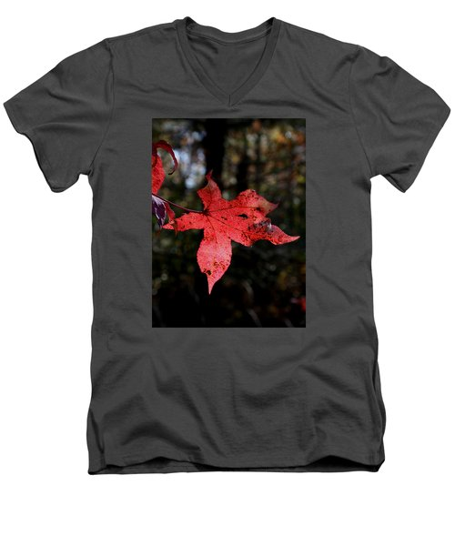 Men's V-Neck T-Shirt featuring the photograph Red Leaf by Karen Harrison