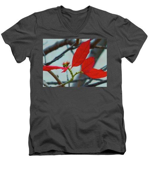 Red Leaves Men's V-Neck T-Shirt by Beto Machado