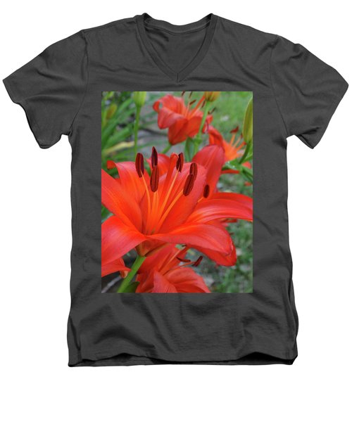 Red Lilies Men's V-Neck T-Shirt by Rebecca Overton