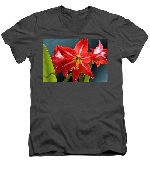 Red Lily Flower Trio Men's V-Neck T-Shirt