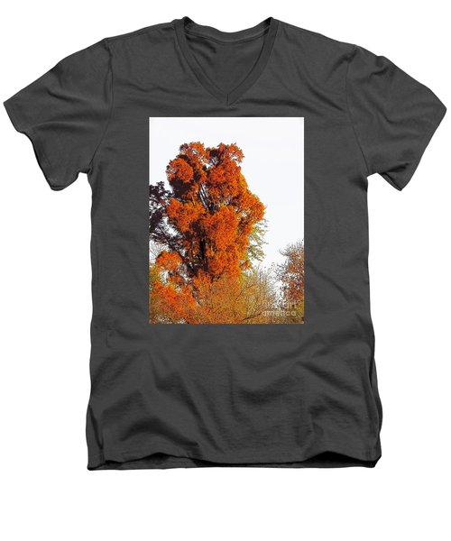Red-orange Fall Tree Men's V-Neck T-Shirt by Craig Walters