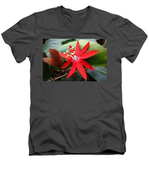 Red Passion Flower Men's V-Neck T-Shirt