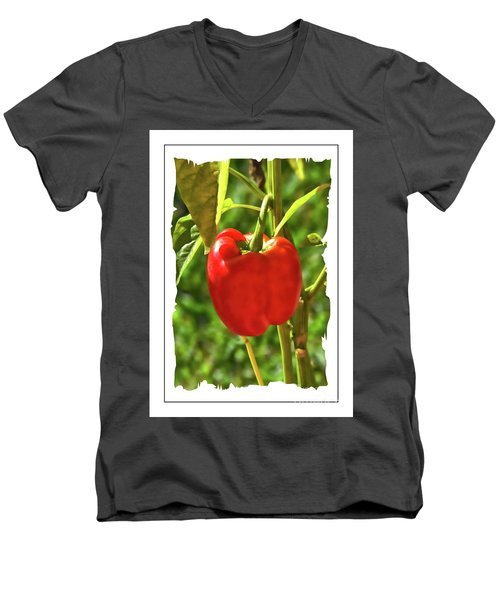 Red Pepper On The Vine Men's V-Neck T-Shirt