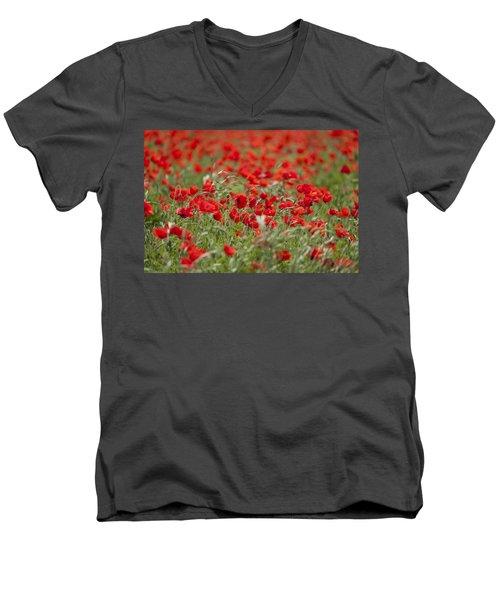 Red Poppies Men's V-Neck T-Shirt