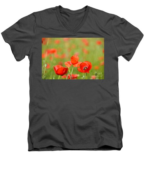 Red Poppy In A Field Of Poppies Men's V-Neck T-Shirt by IPics Photography